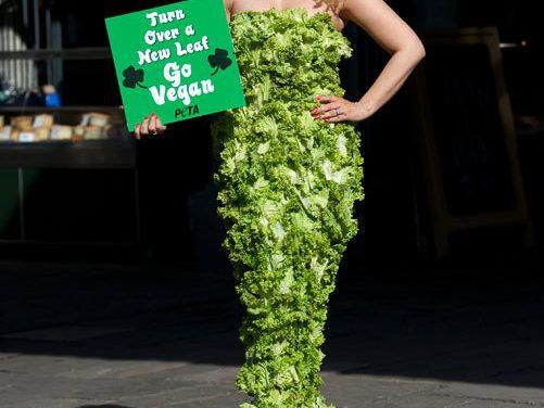 Victoria Eisermann New VV TV Presenter