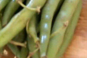 How to freeze green beans with Karin Ridgers