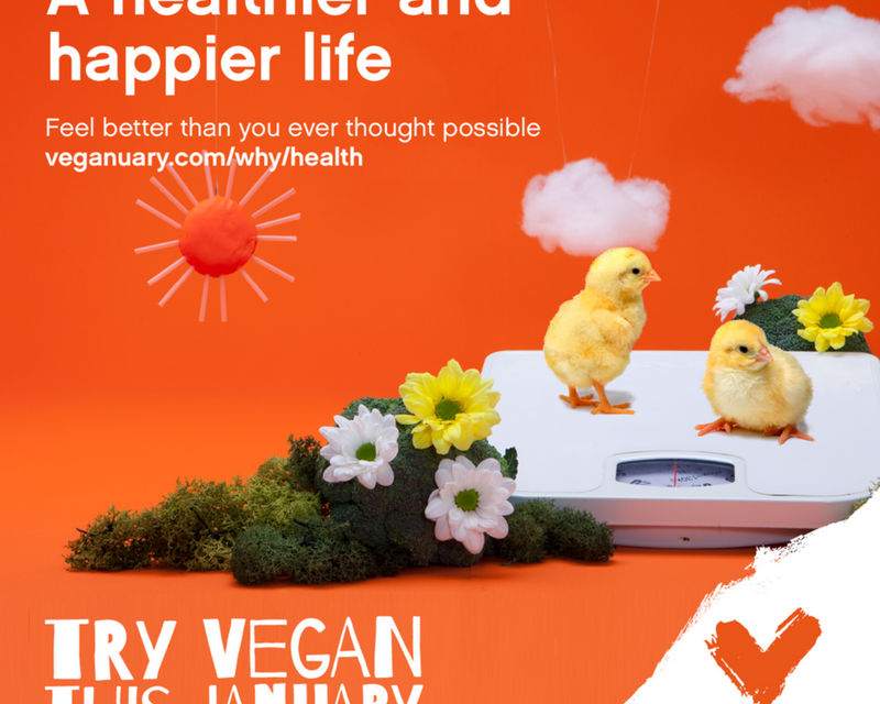 Veganuary 2021 Saves Over 2 million Animals in Just One Month