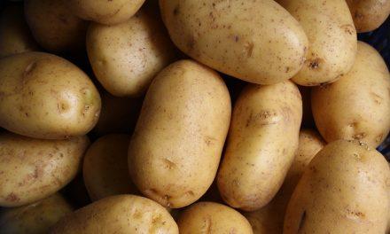 Easy Vegan Garlic Potatoes