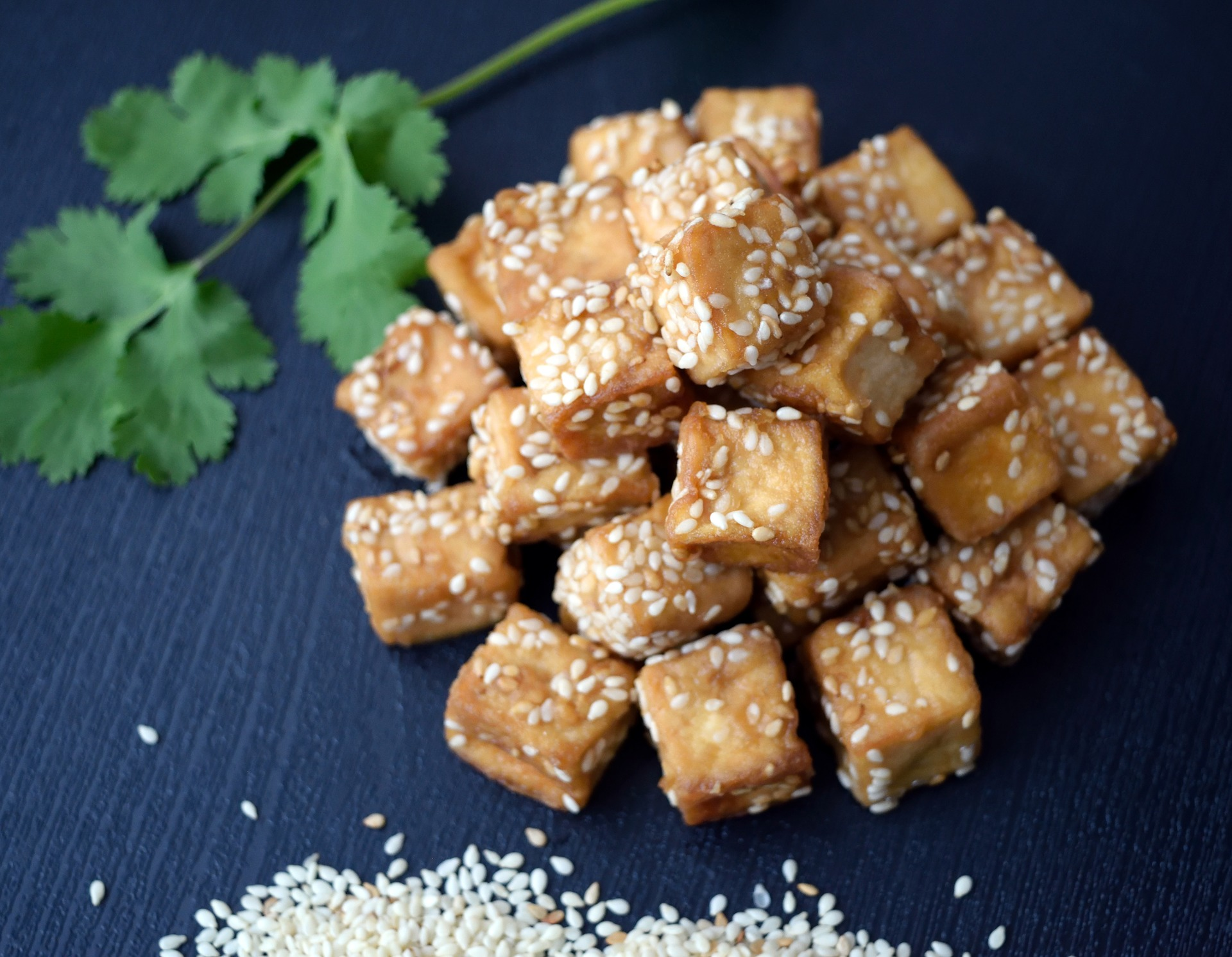 Using Tofu, Seitan, TVP and Tempeh in Vegan Diets