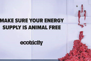 Animals in Energy Shock –The Secret Ingredient In Your Gas and Electricity