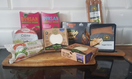New Vegan Business With Amazing Hard to Find Products Dairy Free Triangle!