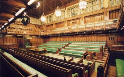 """House of Lords Find No Evidence """"Vegetarian Burgers"""" Are Misleading For Consumers"""