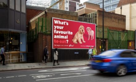 What's Your Favourite Animal To Eat? Provocative Vegan Billboards Appear Across The East Midlands
