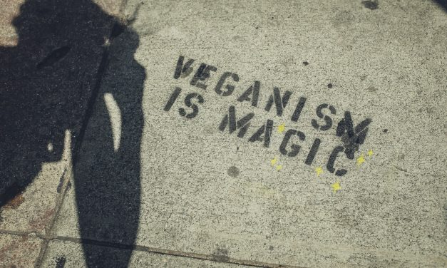 The Biggest Misconceptions About Vegan Lifestyles, Revealed!