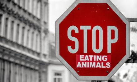 So…. What's The Best Way to Advocate Veganism?